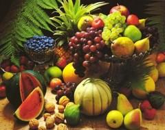 ambiente, green economy, green, sologreen, Spesa di stagione, frutta, verdura, guide, guida conservazione frutta e verdura, notizie
