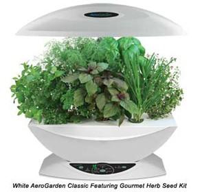 Aerogarden l orto in cucina i prezzi sologreen for Piantine orto prezzi