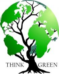 green economy, ambiente,sologreen, chi siamo